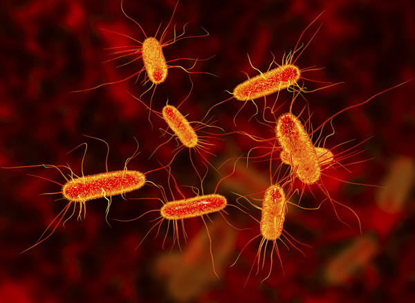 Un antibiótico hecho con inteligencia artificial