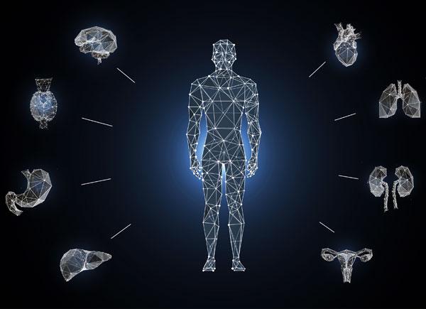 Páncreas impreso en 3D para tratar la diabetes